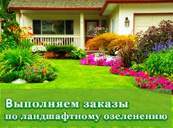 Выполняем заказы по озеленению територий в Москве.